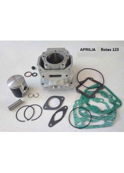 Kit cylindre piston Rotax 123